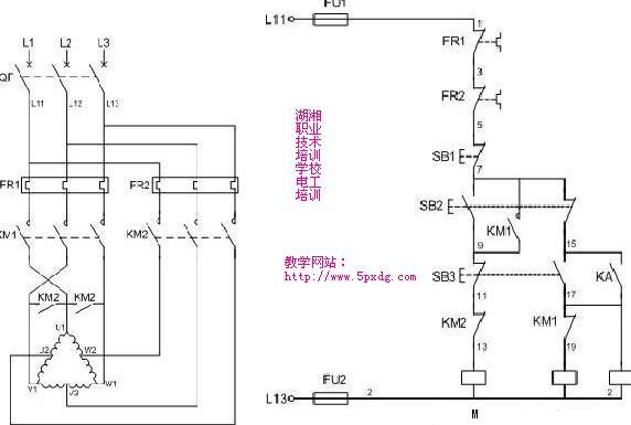 电工培训关于双速电动机接线方法